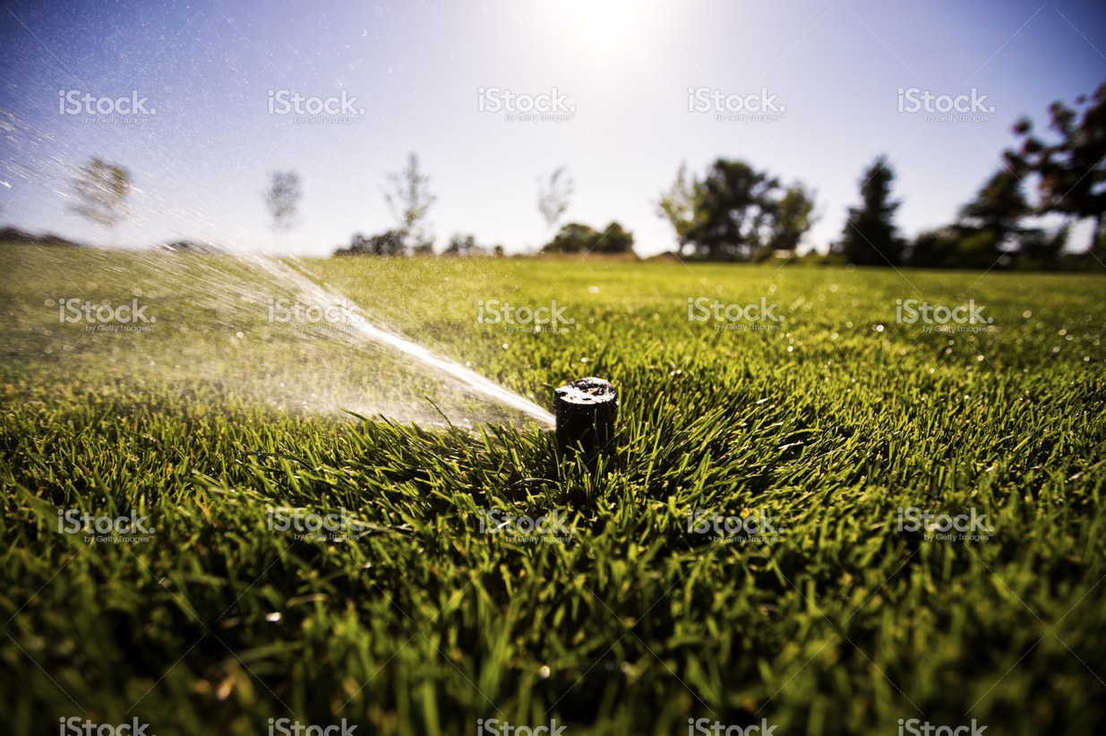stock-photo-77454109-sprinkler-head-watering-grass — kopia
